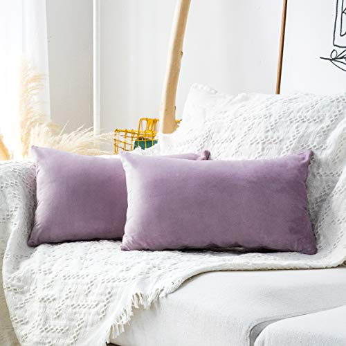 MUDILY Pack of 2 Soft Velvet Decorative Back Protect Oblong Throw Pillow Covers Rectangle Cushion Case Decor Handmade Pillowcases for Sofa Chair Bed Bench, Lavender 12 x 20 Inch 30 x 50 cm