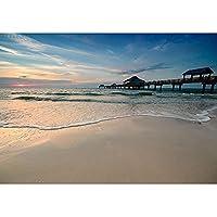 lovedomi 10x7ft アメリカの美しい沿岸風景サンセットブルーウォーター写真背景写真スタジオブース背景家族休暇誕生日パーティー写真スタジオ小道具写真ビニール素材