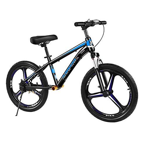 ZLI Bicicleta Equilibrio Bicicleta de Equilibrio Grande con Neumáticos de Aire 16/18/20 Inch, Bicicletas Sin Pedales para Niños Grandes/Adultos/Personas Pesadas, Asiento y Freno Ajustables
