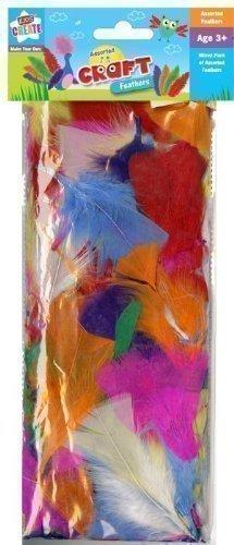The Home Fusion Company Enfants Enfants Pack de Couleur Mixte Plumes Artisanat Art Amusant Rouge Bleu Vert