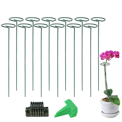 Wanapure 12 Pack Plant Support Stakes,Garden Plant Cages Support Rings for Flowers,Metal Single Stem Plant Support for Tomatoes,Peony,Lily,Rose,Vine,Green Vegetable,Indoor Leafy Plants(15.8 inch)