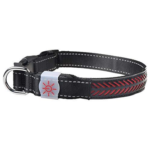 Tomantery Collar para Mascotas, con Hebilla de Ajuste, Collares de Seguridad Nocturna Que Hacen Que la Mascota Sea más Visible,(Red, L Code)