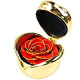 YQY Rosa de Flores con conservas a Mano, Caja de joyería, Rosas Nunca marchitas, Rosa eterna para los de Amor, para el día de San Valentín, cumpleaños, Aniversario de Bodas,C
