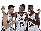 Memphis Grizzlies Poster auf