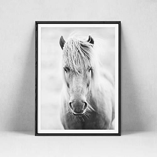 Li han shop Testa di Cavallo in Bianco E Nero Poster Arte Pittura Animali Cavalli Fotografia Stampe su Tela Casa Camera Immagine della Parete Decorazioni Moderne 50X70Cm
