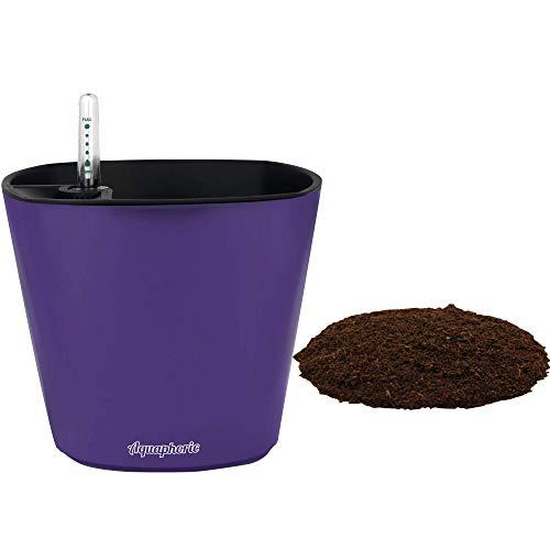 Window Garden Aquaphoric Self Watering Planter (7