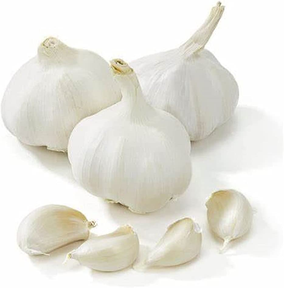 Organic Garlic Easy to germinate Max 84% OFF Bulb Pur Imported Colorado Springs Mall