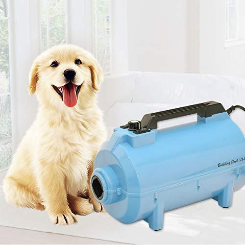HHUMR Secador De Pelo De Perro Creativa 2200W Pet Agua Soplador 3 Boquillas La Preparación del Gato Cachorro Equipo De Suministros De Baño Ajustable De Alta Velocidad del Viento