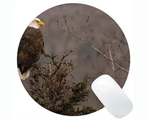 Einzigartige kundenspezifische runde Mausunterlage Mousepad, Adler-Vogel-Fleischfresser-Schnabel-Vogel-Thema-runde Mausunterlage mit genähtem Rand