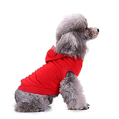 xihan123 Dog Clothing Summer Puppy Clothes Onesie For Dogs Comfort Dog Recovery Suits Suitical Recovery Suit Dog For Small Dogs Cats Pet More Fashinable Summer red 3,M
