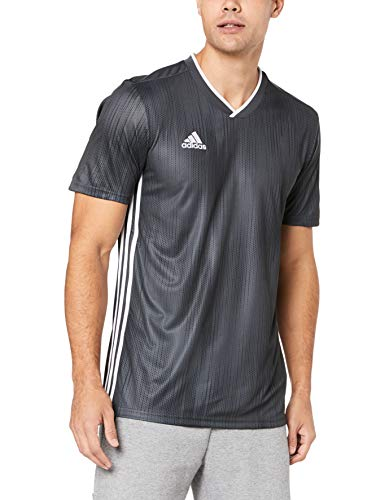 adidas Tiro 19 JSY Camiseta de Manga Corta, Hombre, DGH Solid Grey/White, XL
