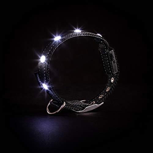 Thomas & Henry Diamant LED Hundehalsband in Größe S – Premium Leuchthalsband für Hunde mit ultrahellen Diamant LEDs als Anti-Zug-Halsband, stilvolles Design, aufladbar per USB, Farbe Schwarz