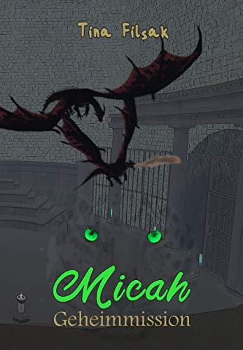 Geheimmission (MICAH 19)