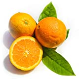 Kejora California Grown Navel Oranges - 10 LBS ( about 20 counts )