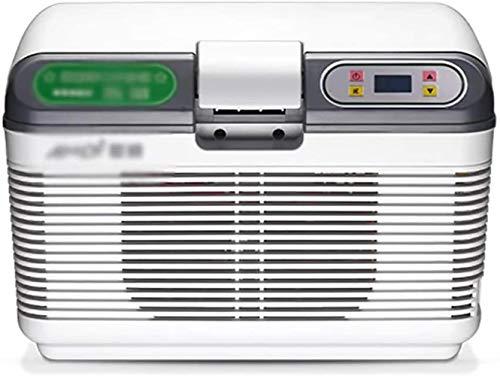 GAONAN Car refrigerator Portable Small 12V / 24V / 220V Dual-core Refrigeration Electric Cool Box and Warmer-Ideal for Camping Travel Picnics Mini Fridges Car cooler (Color : A(12l))