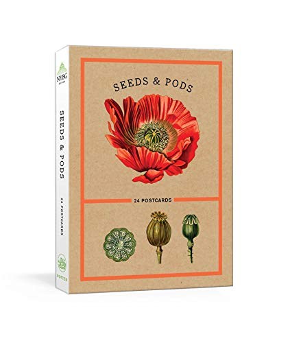 Seeds and Pods: 24 Postcards (New York Botanical Garden)