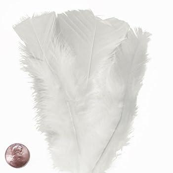 Large White Turkey Flat Feather  50/Pack