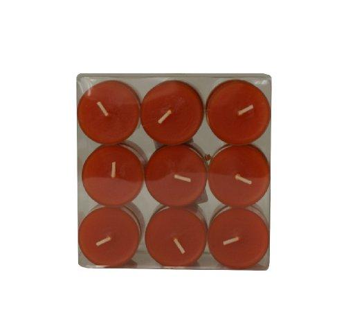 Wenzel-Kerzen 31-1522-18-57 Lot de 18 bougies de table avec bougeoir en plastique 4 h de combustion Couleur terre cuite