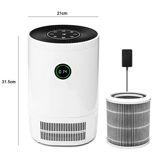 HWHS219 Multifunctionele luchtreiniger HEPA-filter Mute Gebruiksvriendelijke automatische detectie luchtreiniger rookstof geur PM2.5 Eliminator voor mensen met allergieën huisdieren Dander Smoke