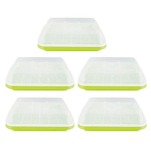 Caja de cultivo de invernadero de interior Juego de cultivo de invernadero Mini juego de cultivo de invernadero Bandeja de cultivo de invernadero con tapa Ventilación Macetas de plástico Caja de plant