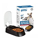 PAWISE Automatic Pet Feeder 300ml Automatic Food Dispenser Station with 48-Hour Timer for Dogs and Cats - Single…