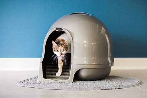 Petmate Booda Dome Clean Step Cat Litter Box 3 Colors, Brushed Nickel