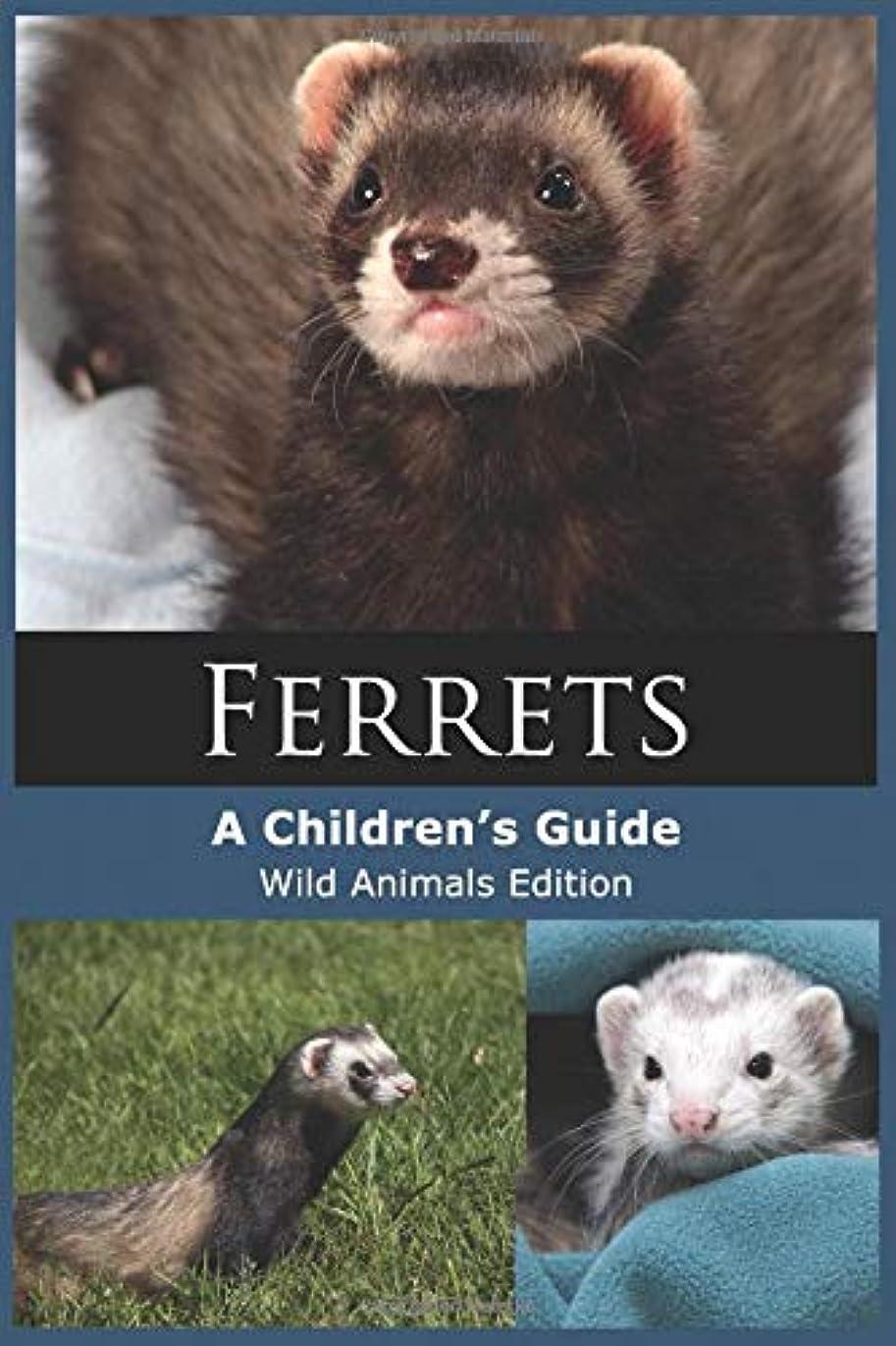出身地乞食バランスのとれたFerrets: A Children's Guide (Wild Animals Edition)