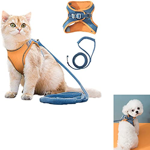 Conjunto de arnés y correa para chaleco para gatos para caminar al aire libre, viene con tiras reflectantes para caminar y malla transpirable y cuello ajustable (Orange blue,M)