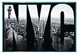 New York City Poster Freiheitsstatue (63,5x94 cm) gerahmt
