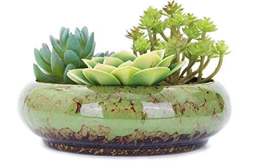 VanEnjoy 7.3 inch Round Large Shallow Succulent Ceramic Glazed Planter Pots with Drainage Hole, Bonsai Pots Garden Decorative Cactus Stand Flower Container (Green)