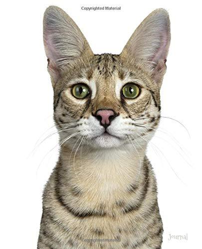 Journal: Savannah Bengal Cat Notebook