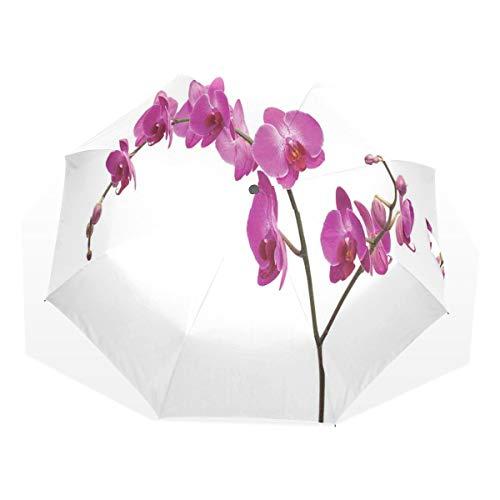 LASINSU Paraguas Resistente a la Intemperie,Orquídeas Silvestres Pétalo Floretes Rama Flor romántica Planta exótica Naturaleza Lámina,Fitness Entrenamiento Fuerte Grunge Print