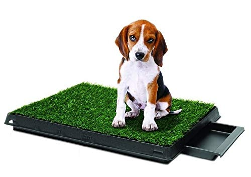 Synturfmats Indoor Pet Potty Patch Puppy Pee Training Pad, Deluxe 3 Pieces Dog Relief System with Drawer, Green, Medium with Drawer 20