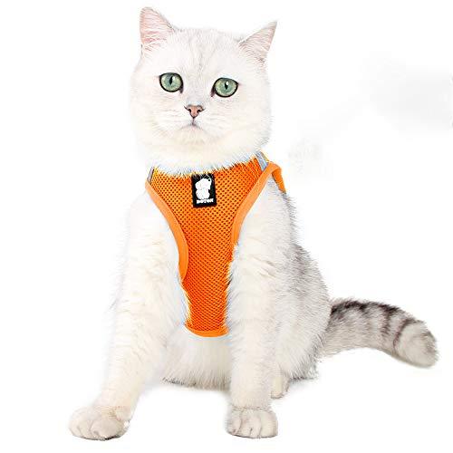 EVEL Katzengeschirr und Leine, ausbruchsicher, reflektierend, verstellbar, weiches Netzgewebe, gepolsterte Weste, Jacke für Haustiere, Welpen, Kätzchen, Outdoor-Aktivitäten