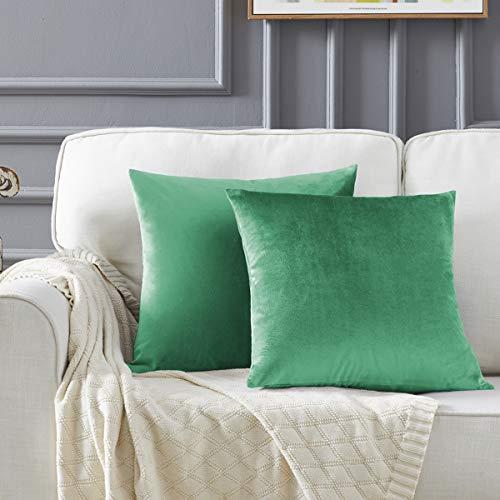 GIGIZAZA Velluto Copricuscini 40x40 cm Decorativi Federe Cuscini Quadrate per Cuscino per Divano Camera da Letto Turchese 2 Pezzi