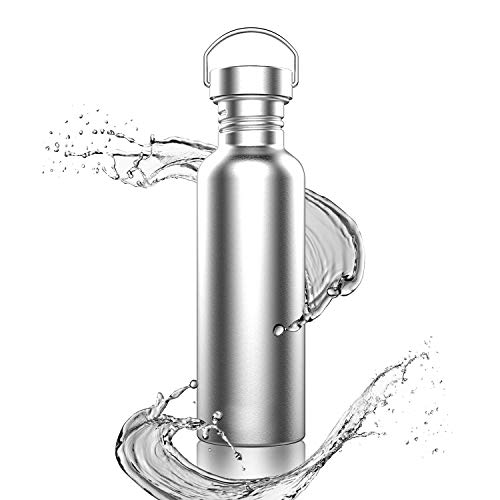 TopBine Stainless Steel Water Bottle 500ml/750ml/1000ml LeakProof Sports Metal Drinking Bottle Eco Reusable Water Bottle for Work, Running, Cycling, Hiking, Gym(With Hook)(1000ML,Silver)