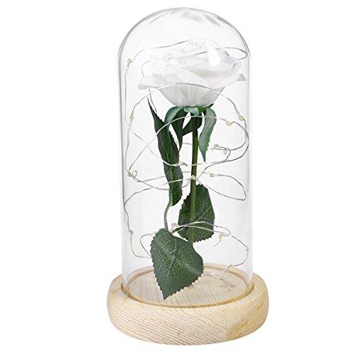 LEDMOMO Rose de soie blanche et lumière de chaîne Led dans un dôme en verre artificiel Rose sur une lampe de table en bois de base pour les cadeaux de la Saint-Valentin Anniversaire de mariage