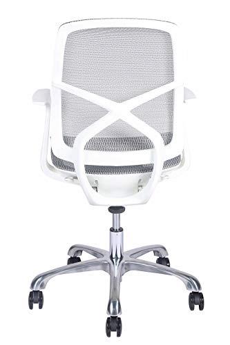 MISURAA Korean Ergonomic Office Chair (Aluminium , White)