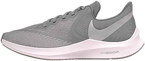 Nike Zoom Winflo 6, Zapatillas de Atletismo Hombre, Multicolor (Cool Grey/Mtlc Platinum/Wolf Grey/White 2), 43 EU