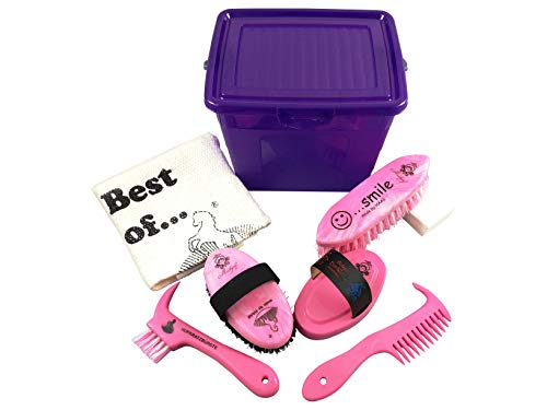 Markgraf Lila Putzbox für Kinder gefüllt mit Pferdeputzzeug in pink von Haas