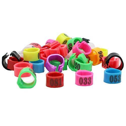 N / A 100 Multi-Color Bird Leg Bands Numbered 8 mm Pigeon Parrot Chicks Duck Clip Rings Band