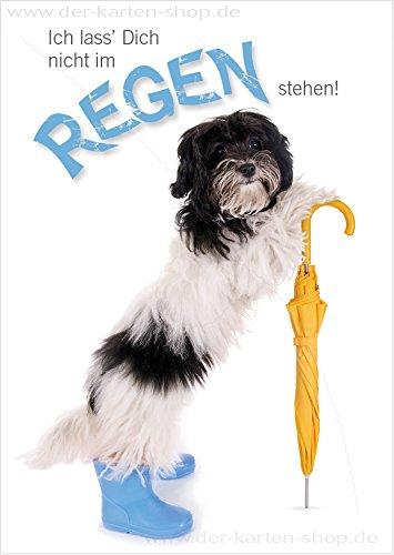 3 stuks grappige A6 dieransichtkaarten ansichtkaart wenskaart schattige hond met paraplu