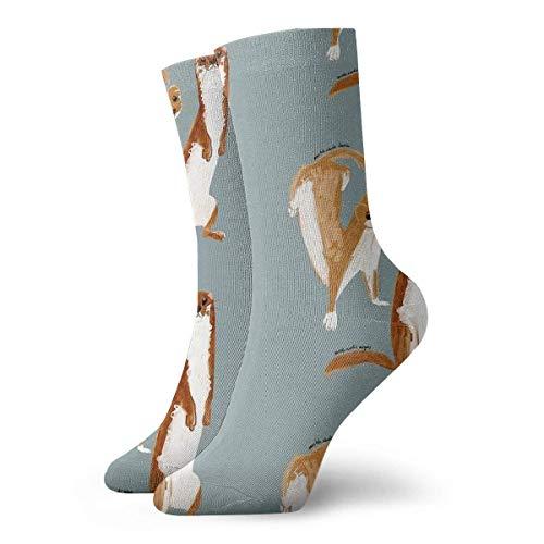 Calcetines divertidos de comadreja (Mustela Nivalis) Calcetines cortos deportivos clásicos de 30 cm / 11,8 pulgadas adecuados para hombres y mujeres Calcetín con lengüeta transpirable para correr con