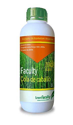 GreenFaculty - Cola de Caballo - Fungicida Ecológico para Plantas de Interior, Jardín y Huerto. Contra Hongos como Oidio y Mildiu. Equisetum Arvense 1L