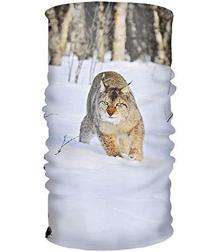 Balaclava Headband Animal Lynx Cats Sweatband Tube For Riding, Off Roader, Biker, Yoga