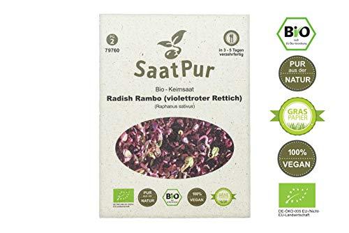 SaatPur Bio Keimsprossen - Radies Rambo Rot - Sprossen, Microgreens - 30 g roter Rettich