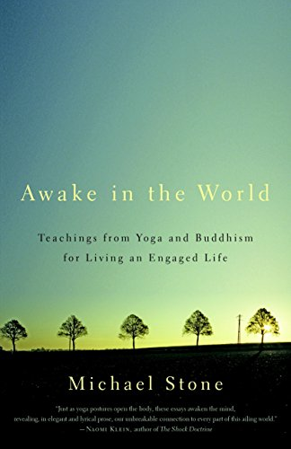 Image of Awake in the World: Teachings from Yoga and Buddhism for Living an Engaged Life