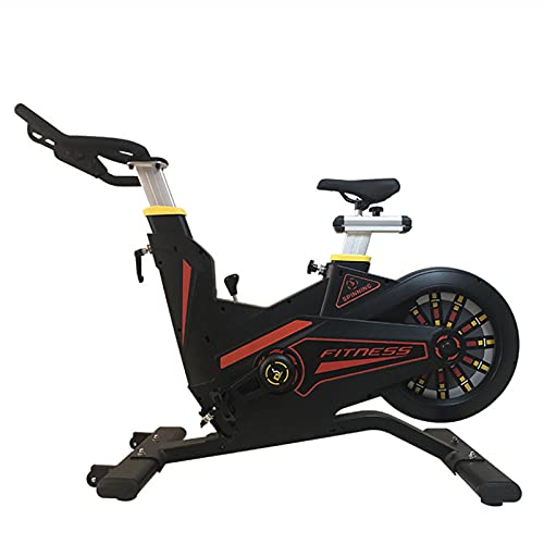 Spinning Bike Exercise Bike for Home Gym, Magnetically Controlled Resistance Indoor Fixed Bicycle, Spin Bike with Adjustable Seat and Handle