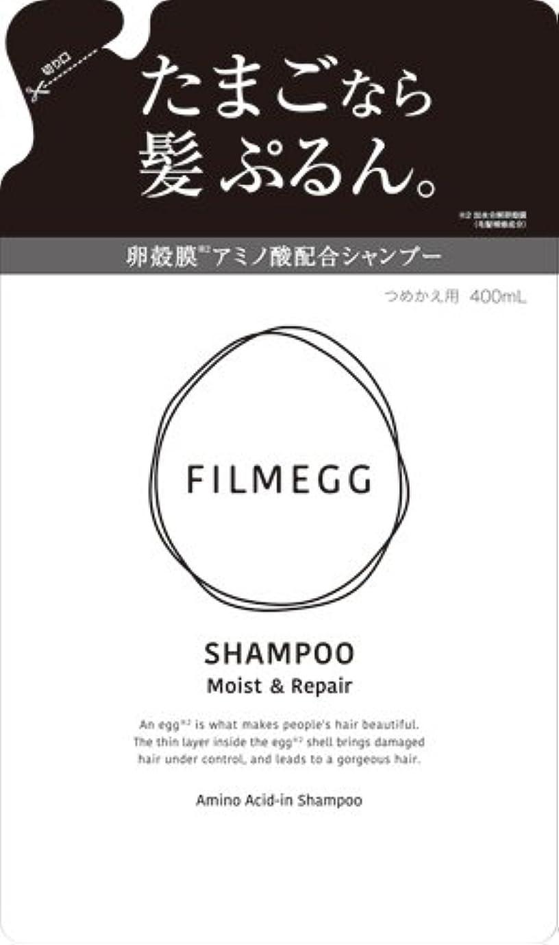 交渉するペインティング写真を描くFILMEGG(フィルメッグ) シャンプー 詰替え 400ml