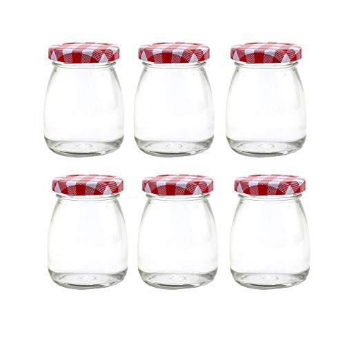 Danmu Art 6 tarros de cristal para pudín de yogur de 100 ml con tapas, pequeños tarros de cristal...